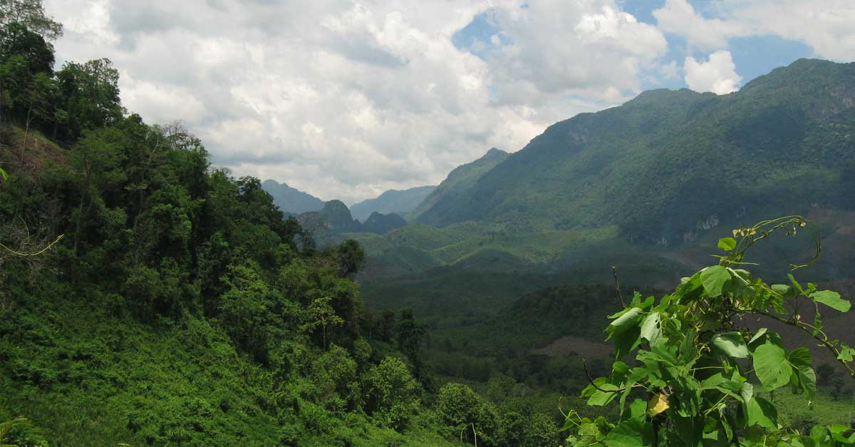 swiss-forestry-reform-laos
