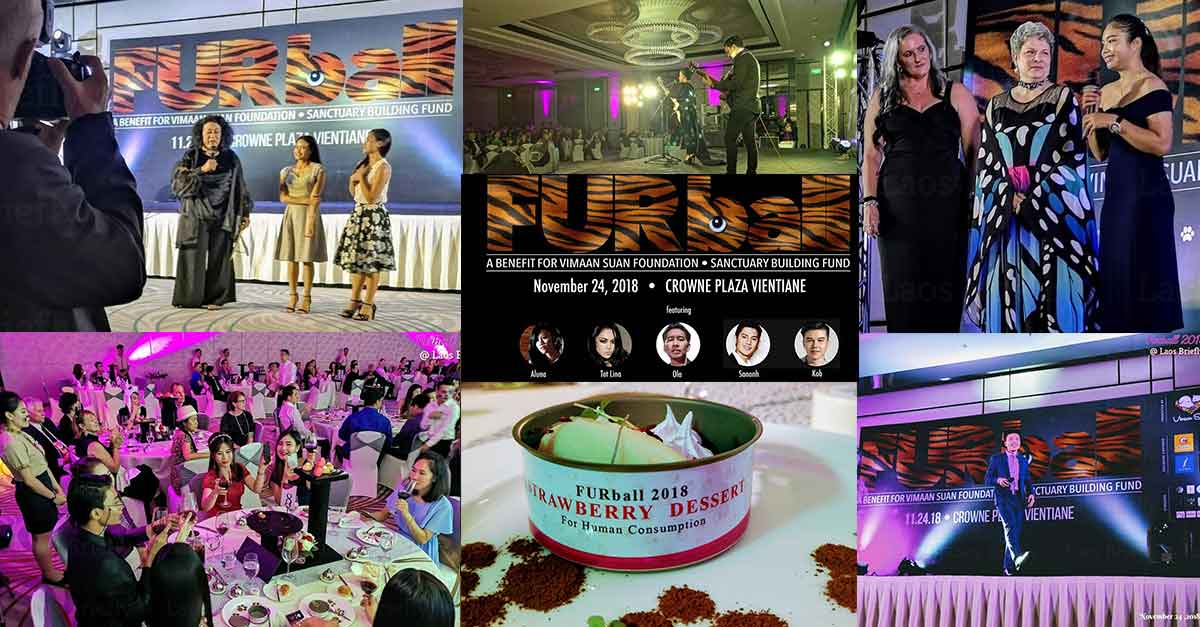 Furball 2018 for Vimaan Suan Foundation in Vientiane Laos.