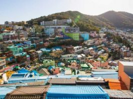 Visitors Treated to Coastal, Cultural, Culinary Landscapes in Busan