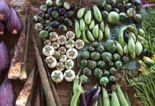 Fruit and vegetable produce in Laos
