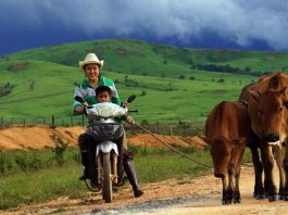 PM tells Lao people to grow crops and raise livestock