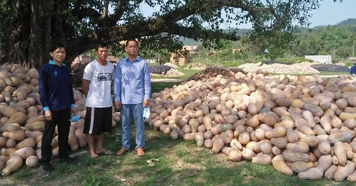 Piles of pumpkins in Oudomxay. Photo credit: Media Laos FB Page