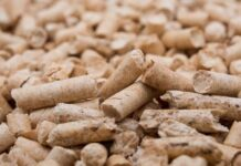 Thai and Lao companies join for wood pellet project