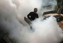 Mosquito fogging to prevent dengue fever