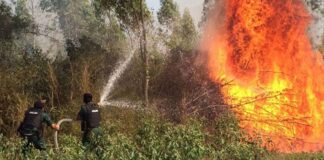 Authorities spray water to extinguish a forest fire last year. Ministry of Information
