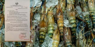 Seafood imports from Thailand banned after Covid-19 outbreak