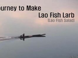 FAO journey to make fish larb