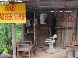 Microbusinesses dominate private sector in Laos