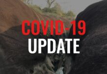 Covid-19 Update for Laos